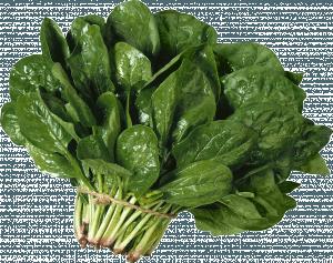 Что можно приготовить из шпината