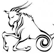 Совместимость знаков зодиака козерог и рак