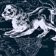 Совместимость женщины стрельца и мужчины льва