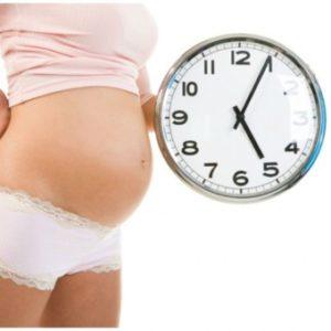 Способы узнать срок родов